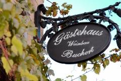 gaestehaus-buchert-neustadt-weinstrasse-pfalzcard